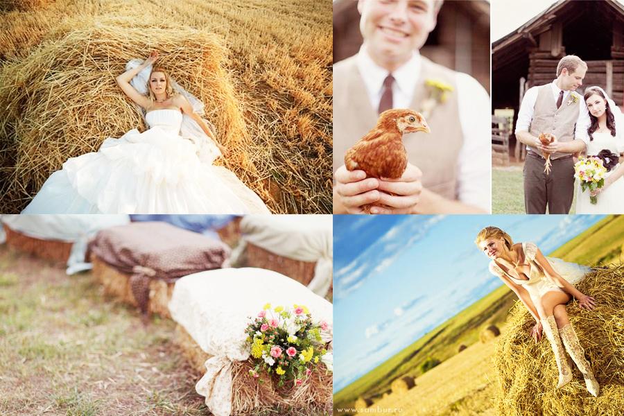 Фото на сеновале в полях и стогах сена